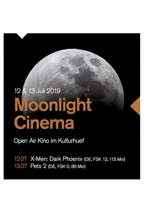 2019_Moonlight_Cinema CMS
